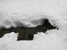 Winter 16-17 007